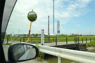 柳川ひまわり園への道