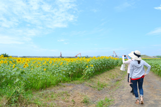 柳川ひまわり園