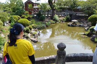 八坂神社の池