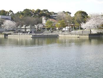 井原堤水辺公園