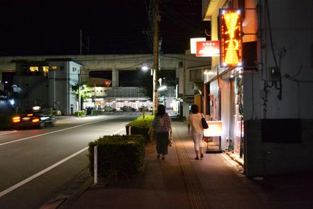 羽犬塚駅前通り