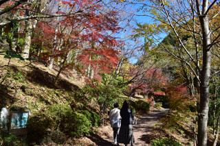 秘境杣の里渓流公園
