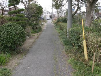 柳川街道(田中道)跡